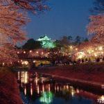 お花見デートにおすすめ!岡崎桜祭りの夜桜で楽しんじゃおう!